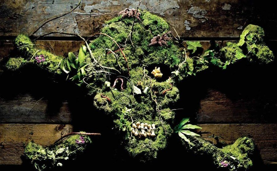 Skull and Crossbones made of Plants