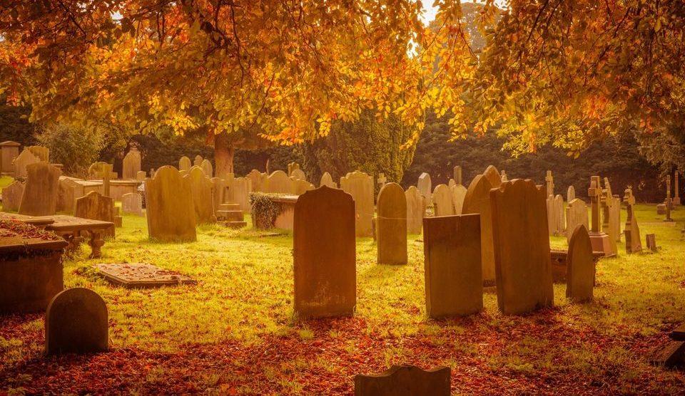 graveyard garden